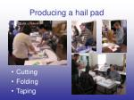 producing a hail pad