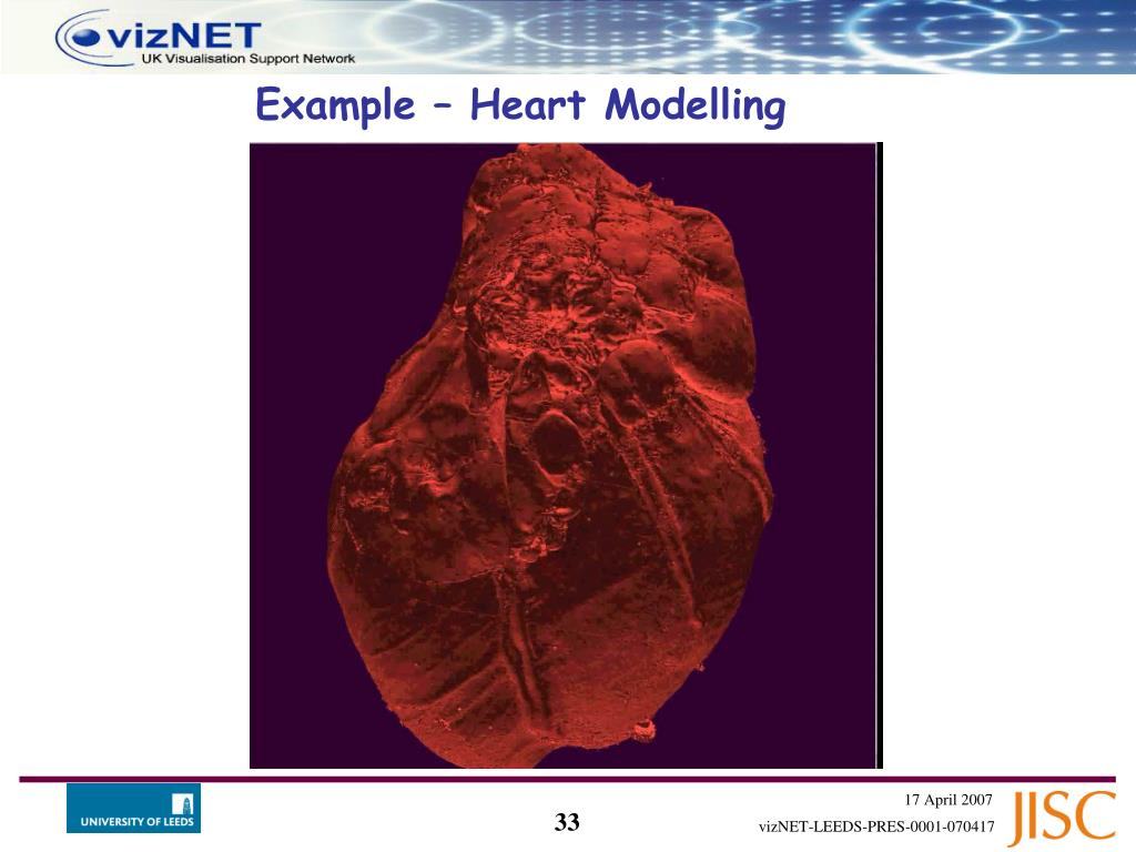 Example – Heart Modelling