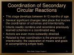 coordination of secondary circular reactions