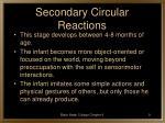secondary circular reactions