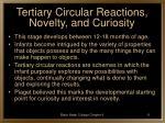 tertiary circular reactions novelty and curiosity