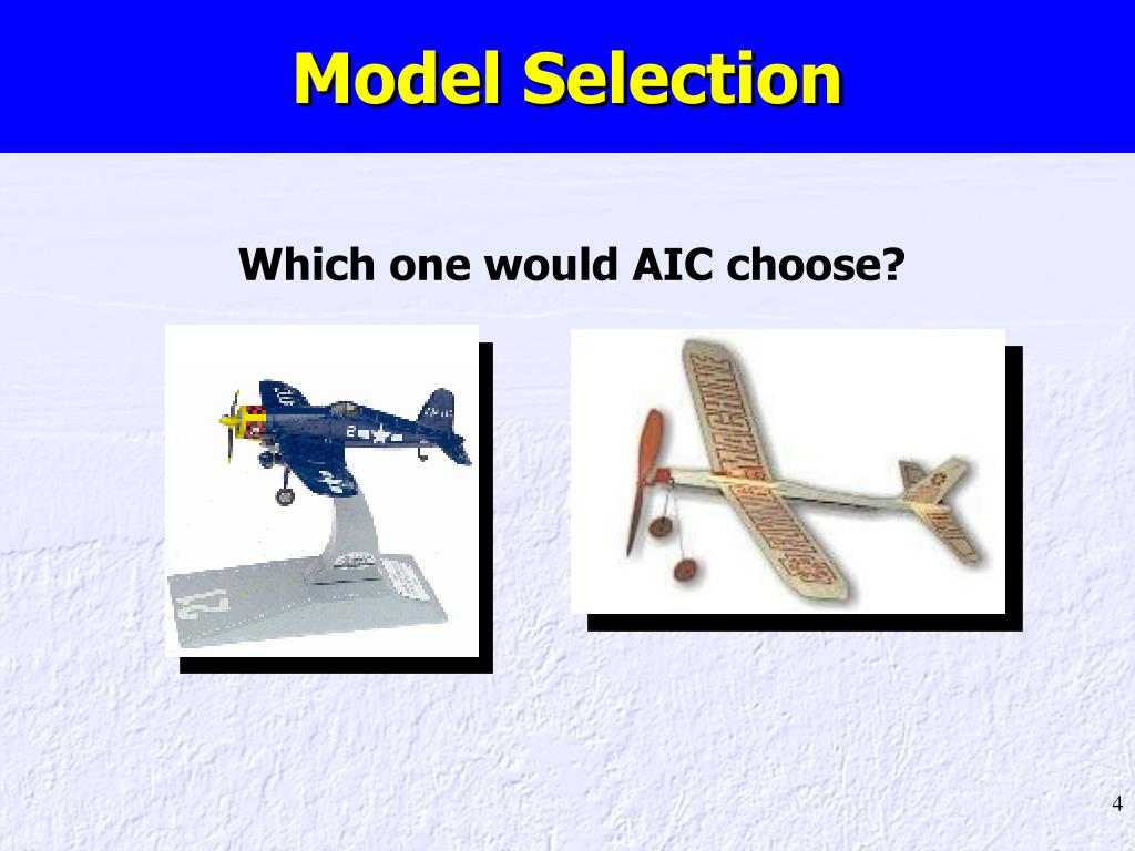 Model Selection