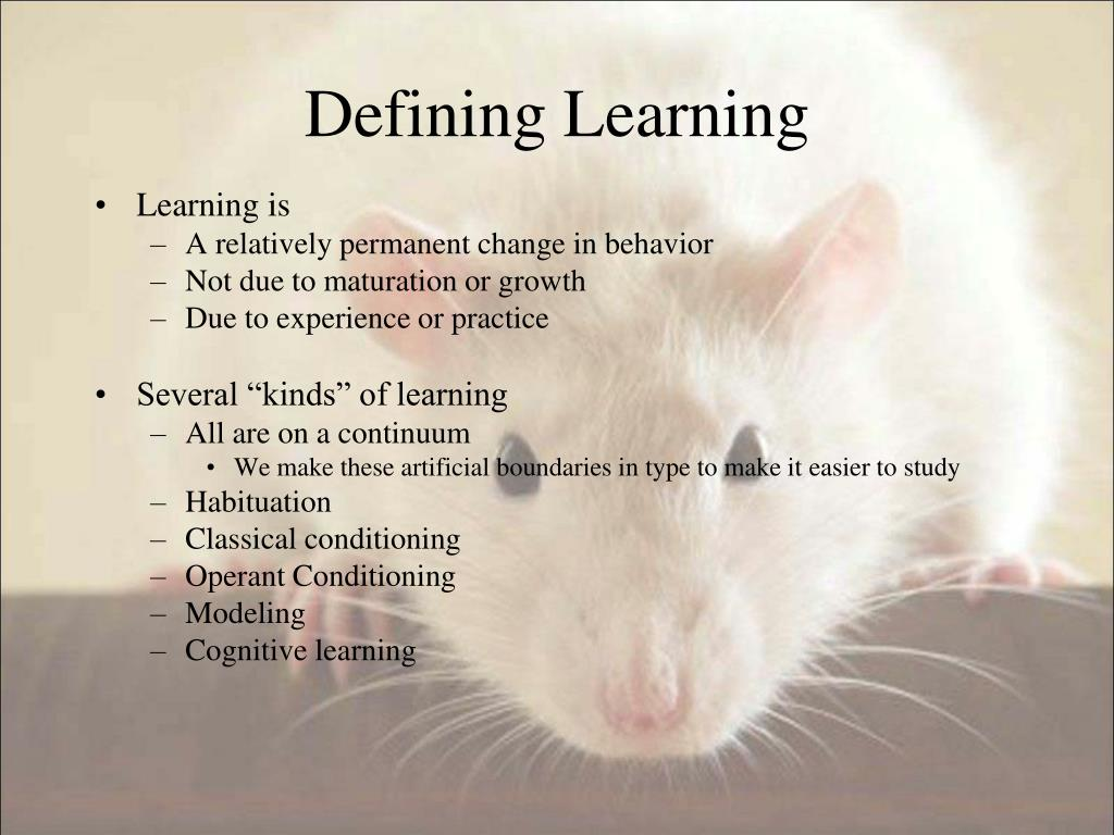 Defining Learning