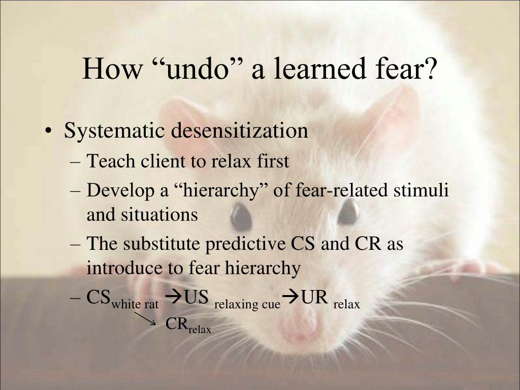 "How ""undo"" a learned fear?"