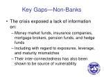key gaps non banks