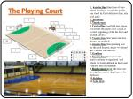 the playing court