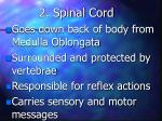 2 spinal cord