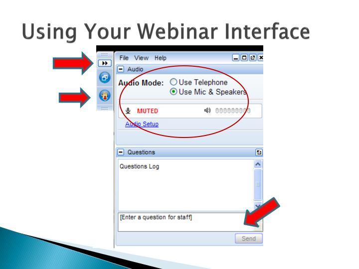 Using your webinar interface