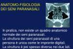 anatomo fisiologia dei seni paranasali