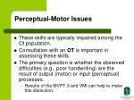 perceptual motor issues