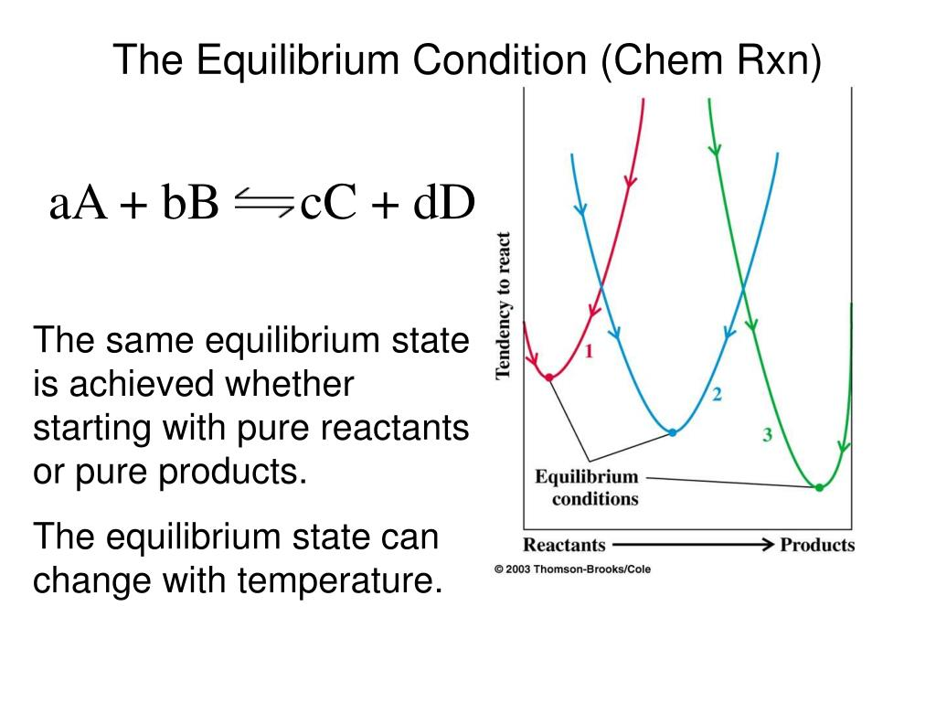 The Equilibrium Condition (Chem Rxn)