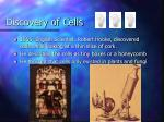 discovery of cells