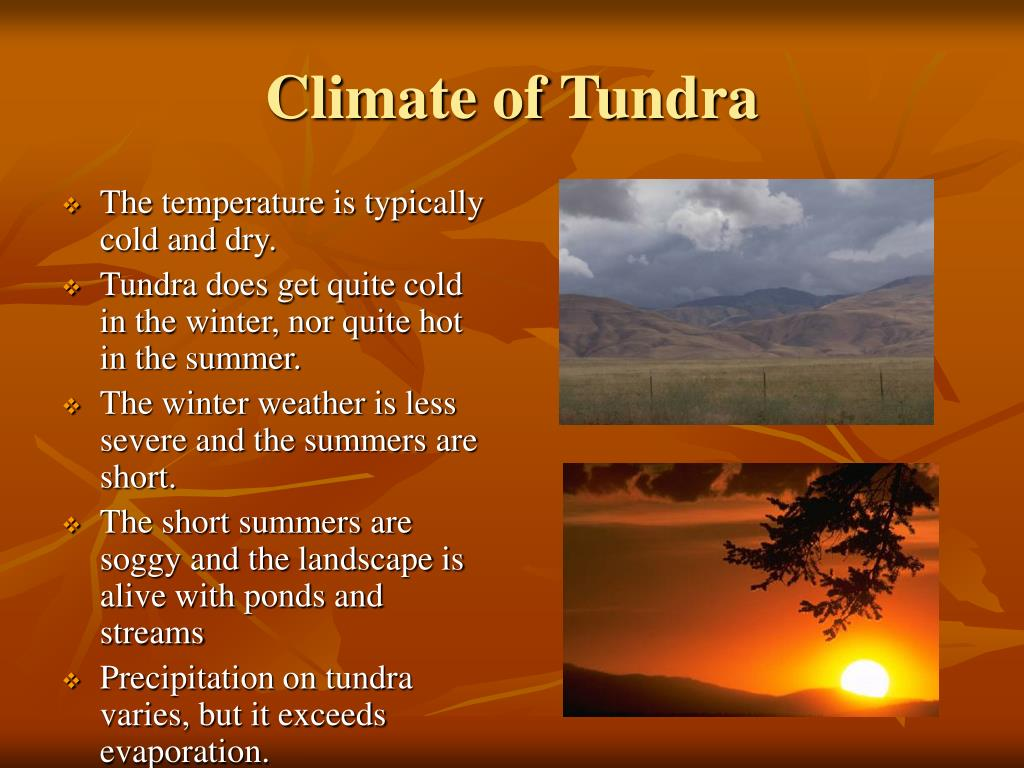 Climate of Tundra