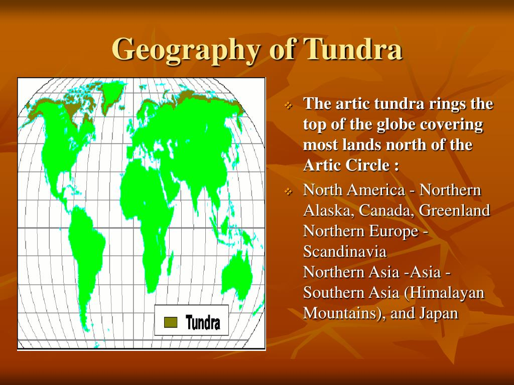 Geography of Tundra