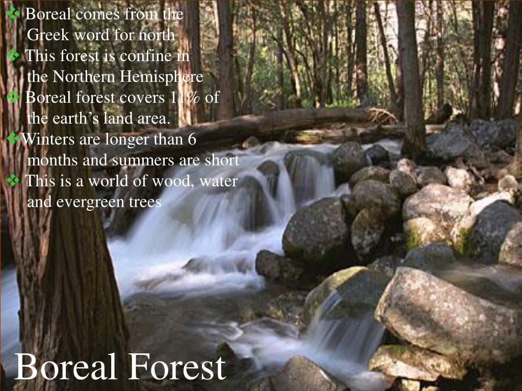 Boreal comes from the