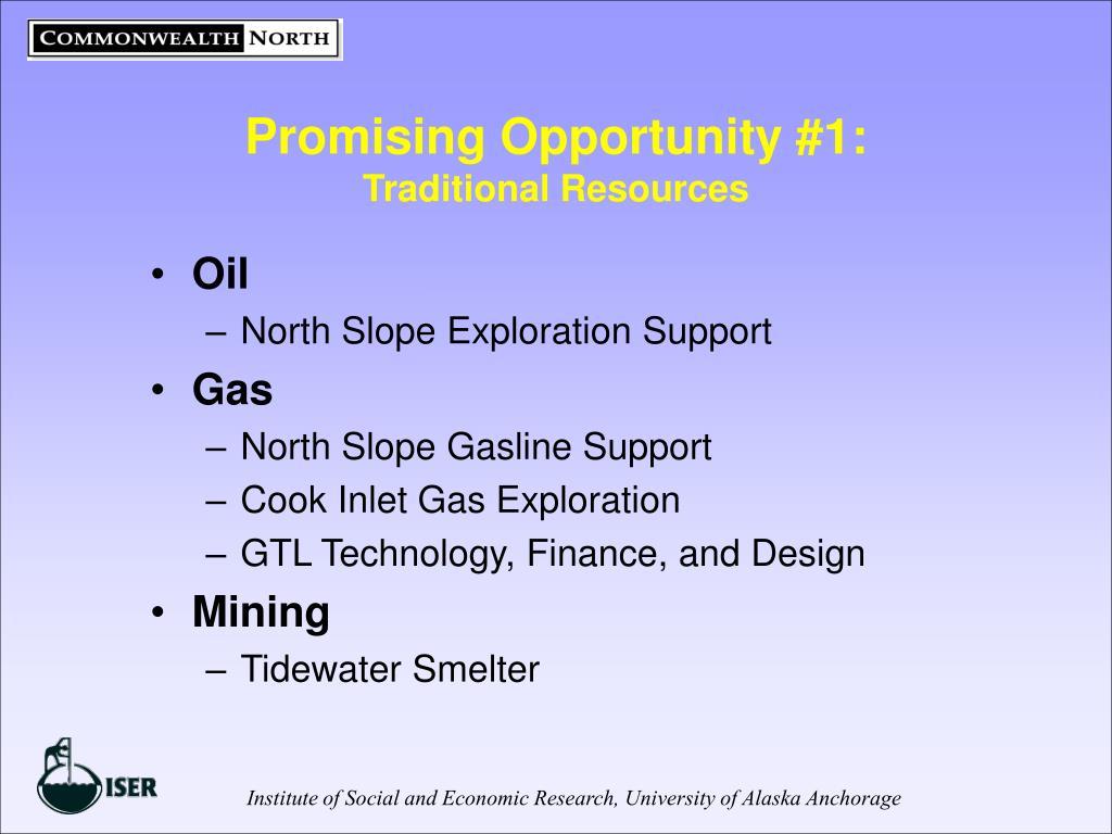 Promising Opportunity #1: