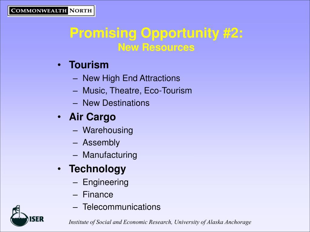 Promising Opportunity #2: