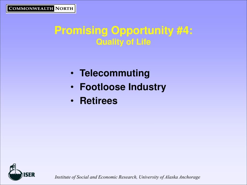 Promising Opportunity #4: