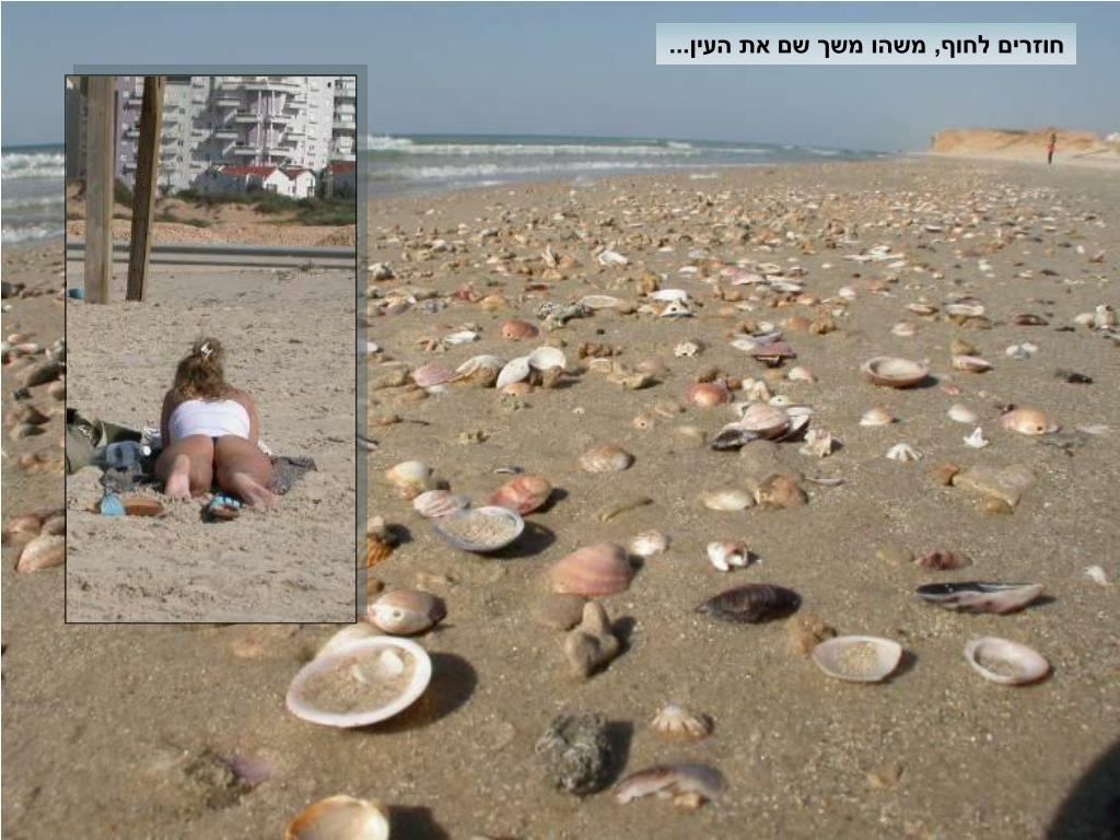 חוזרים לחוף, משהו משך שם את העין...