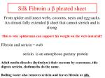 silk fibroin a b pleated sheet