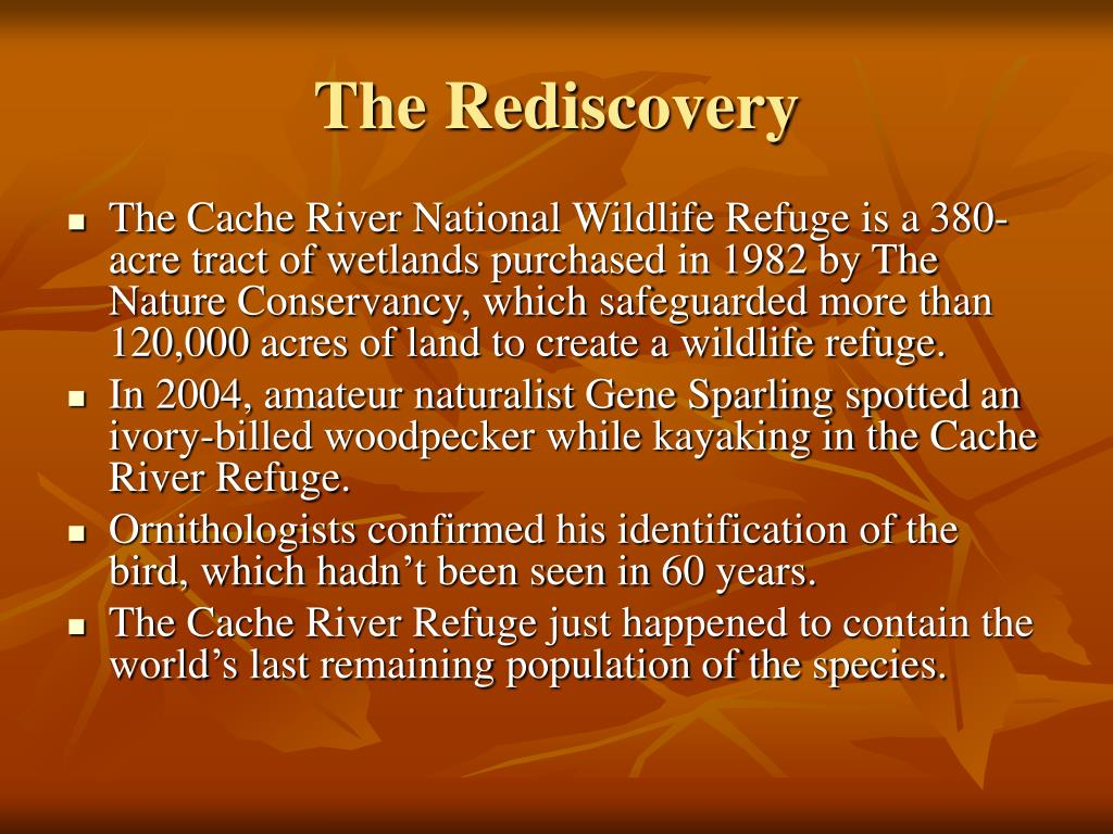 The Rediscovery
