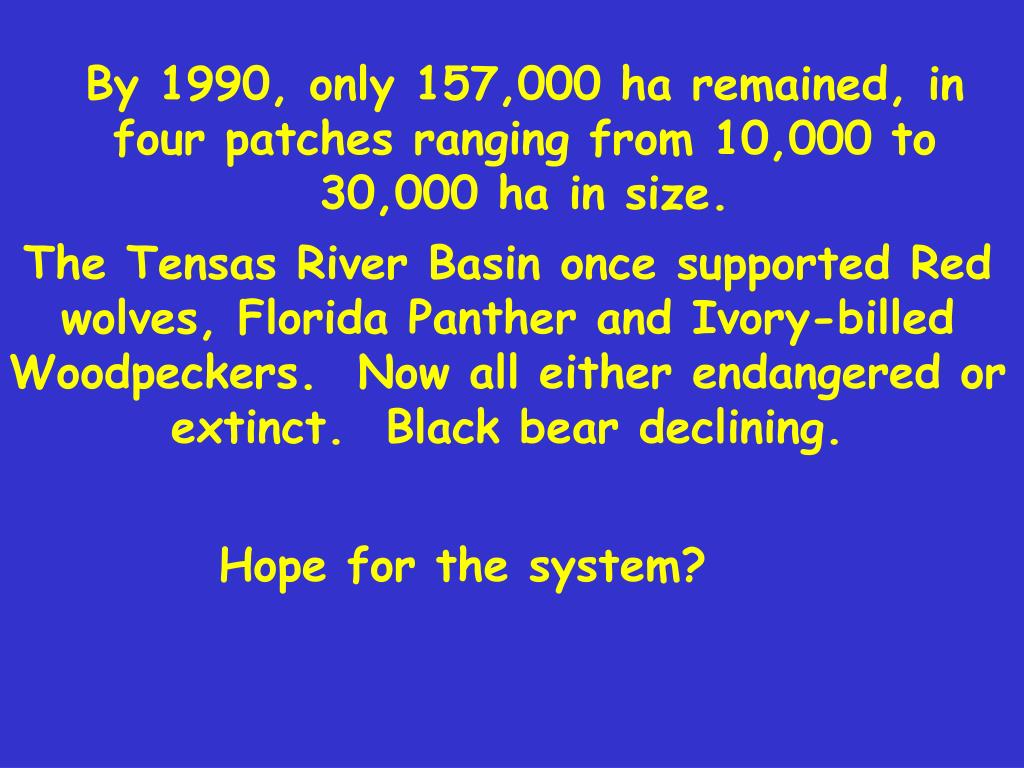 By 1990, only 157,000 ha remained, in four patches ranging from 10,000 to 30,000 ha in size.