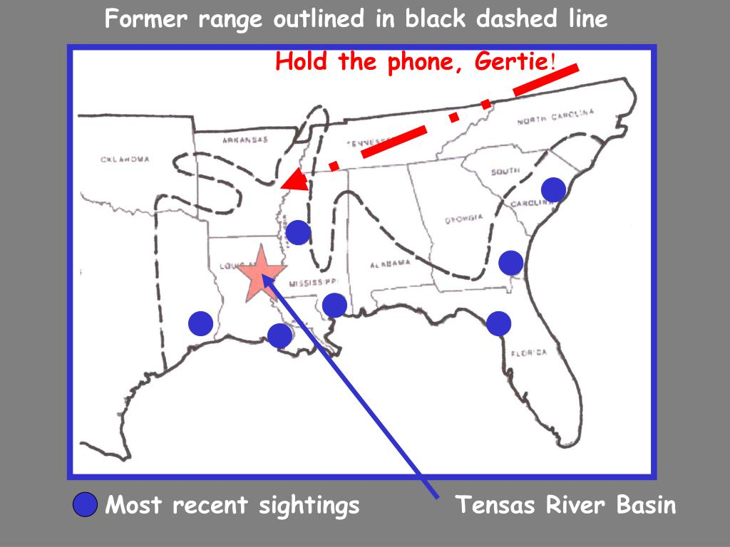 Former range outlined in black dashed line