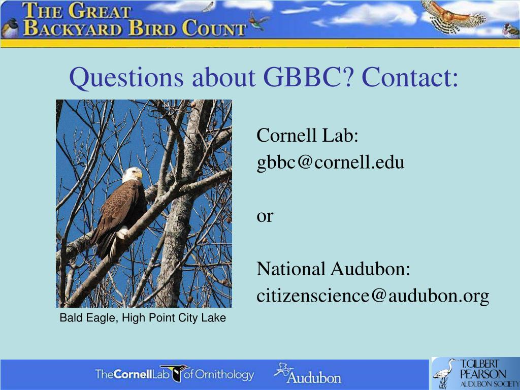 Questions about GBBC? Contact: