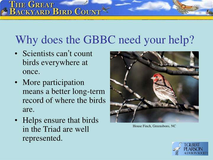 Why does the gbbc need your help l.jpg