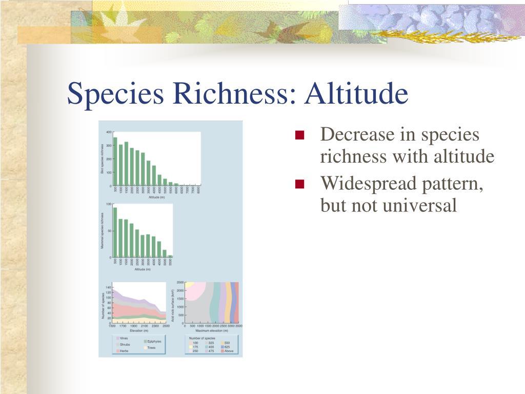 Species Richness: Altitude