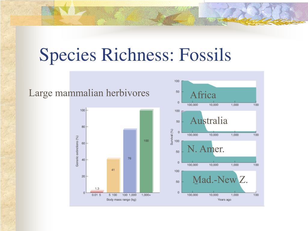 Species Richness: Fossils
