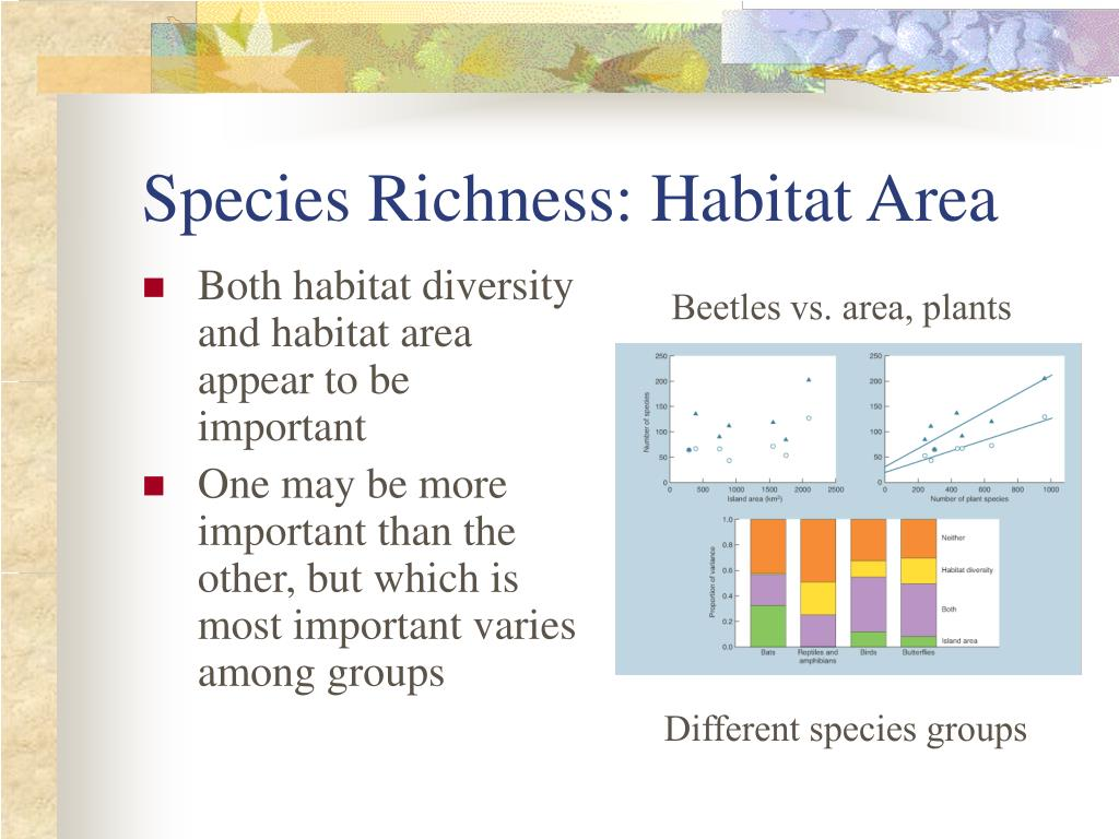 Species Richness: Habitat Area