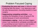 problem focused coping6