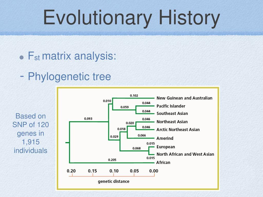Evolutionary History