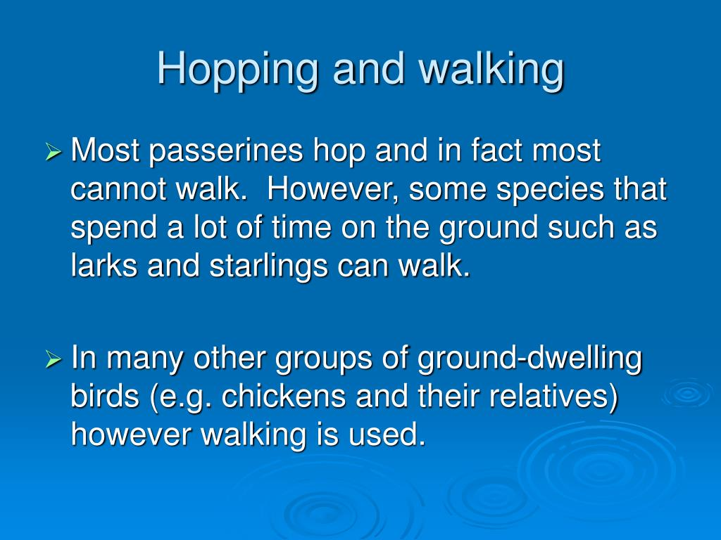 Hopping and walking