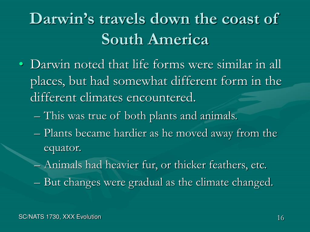 Darwin's travels down the coast of South America
