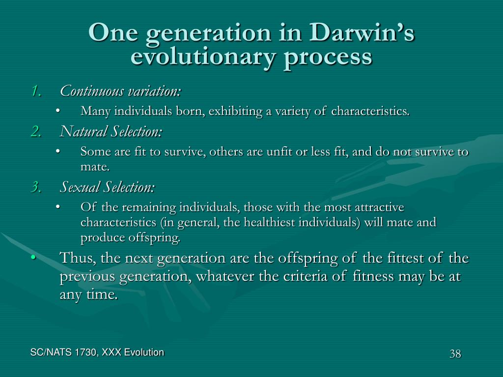 One generation in Darwin's evolutionary process