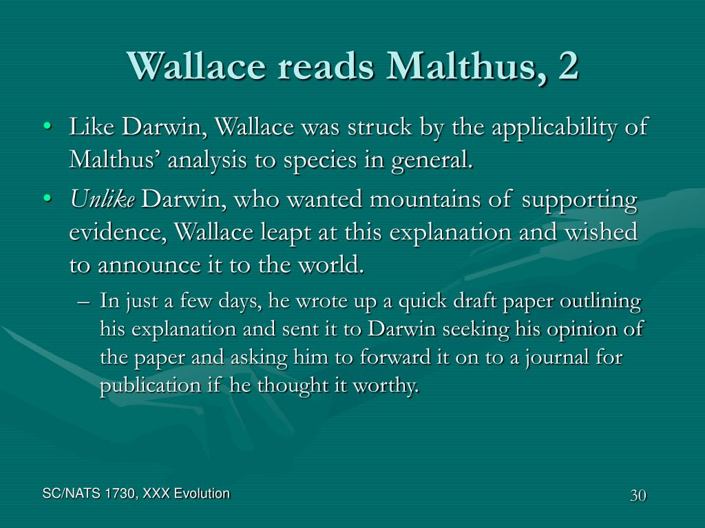 Wallace reads Malthus, 2