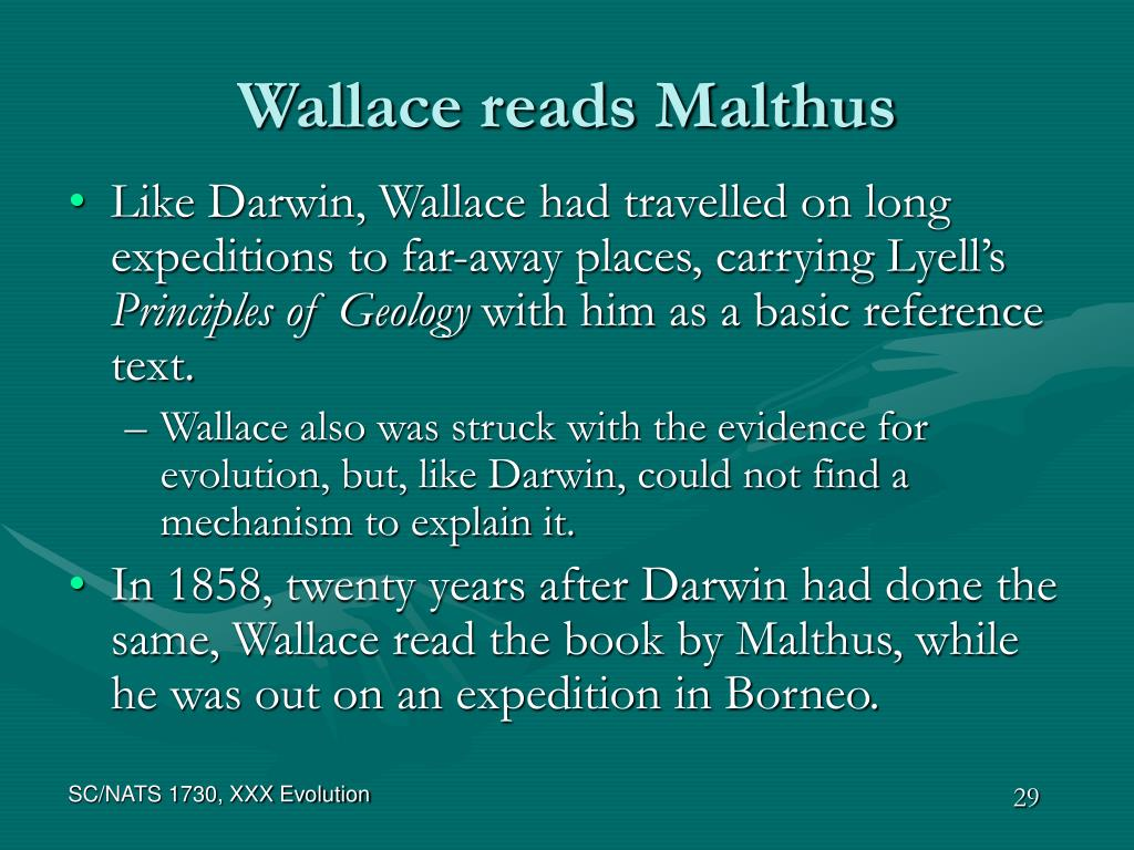 Wallace reads Malthus