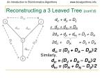 reconstructing a 3 leaved tree cont d