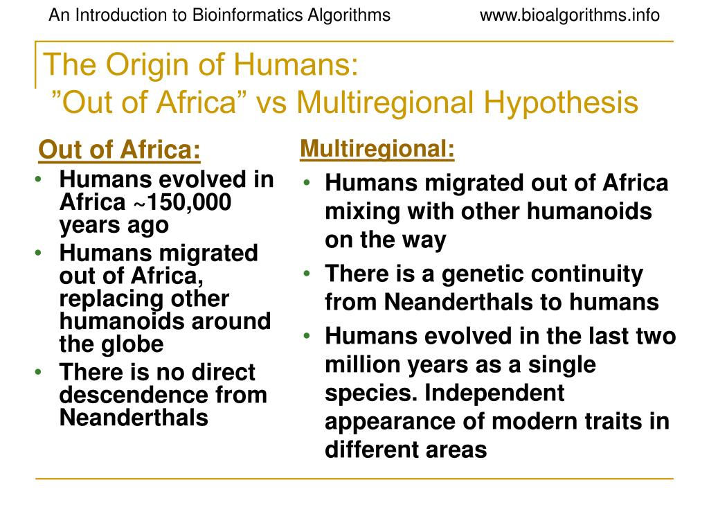 "out of africa thesis vs multiregional The out of africa theory is the theory most scientists are approving as the evolution of all humans due to fossil, anatomical and genetic evidence ""researchers have discovered fossilized remains of two previously unknown primate species that lived 37 million years ago in what is now the egyptian desert."