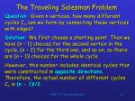 the traveling salesman problem49