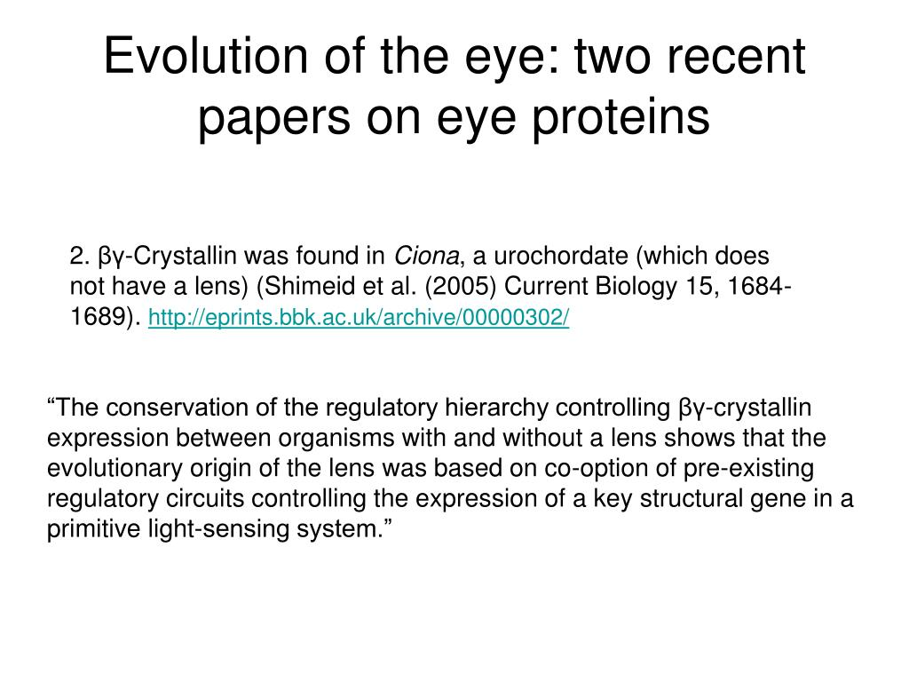 Evolution of the eye: two recent papers on eye proteins