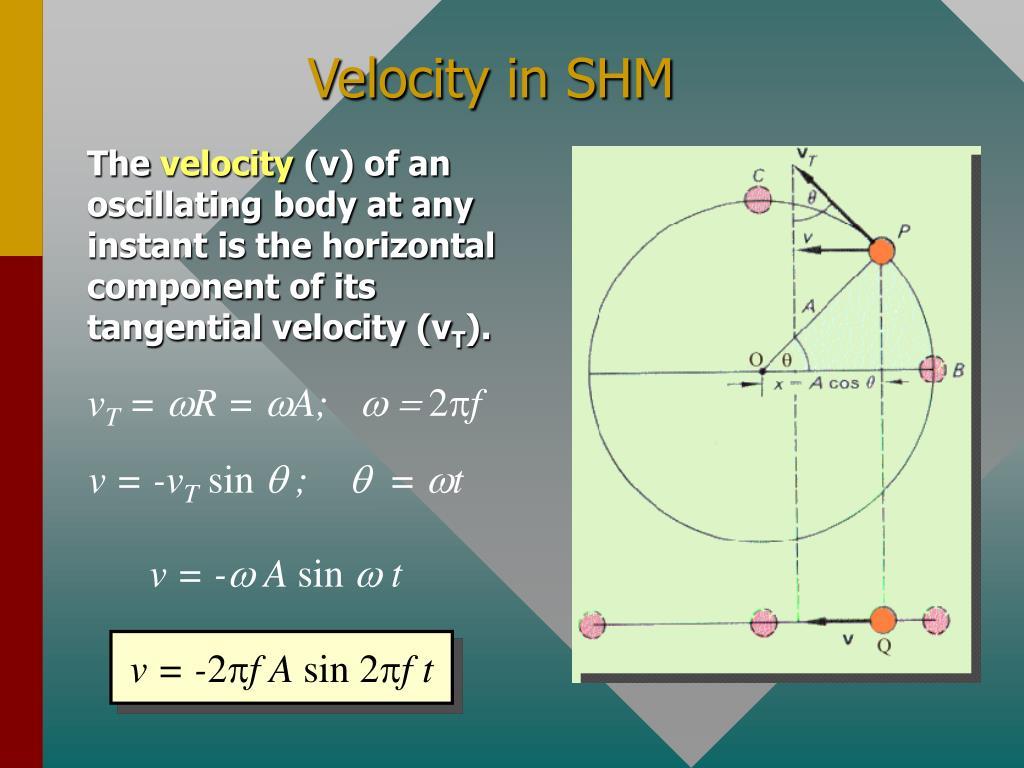 Velocity in SHM