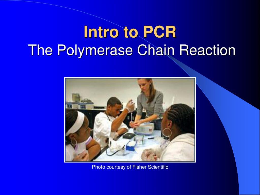 Intro to PCR