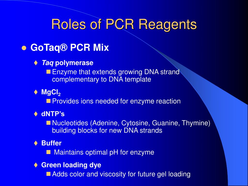 Roles of PCR Reagents