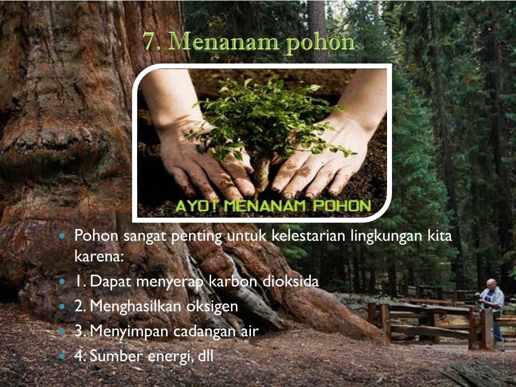 7. Menanam pohon