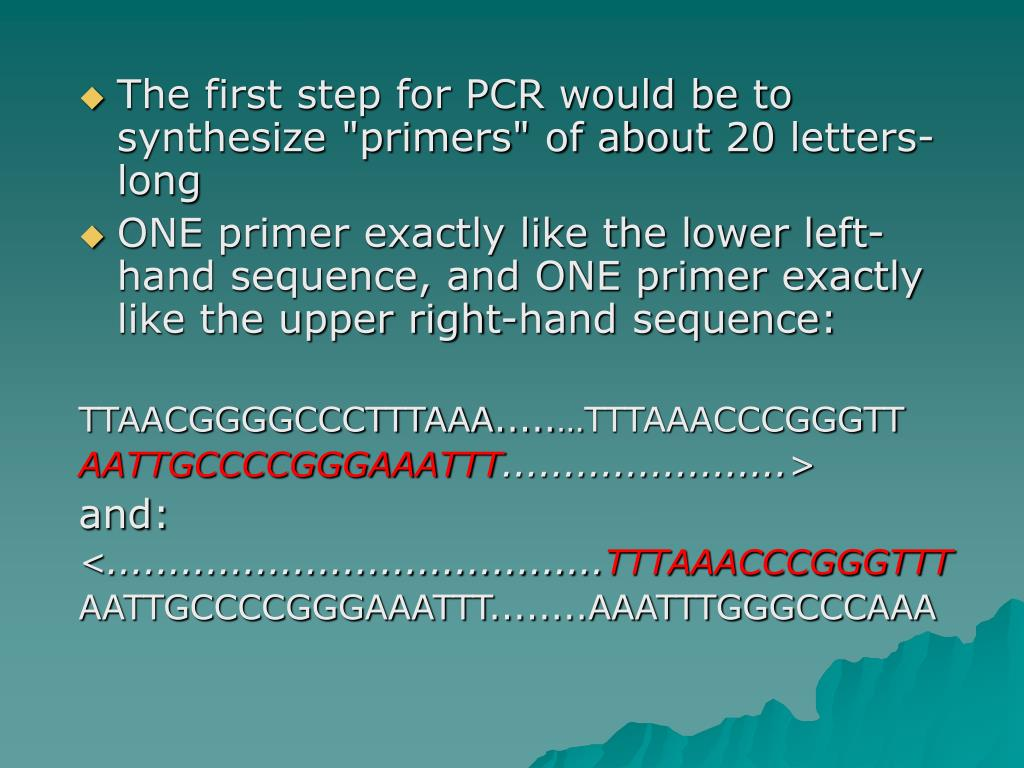 "The first step for PCR would be to synthesize ""primers"" of about 20 letters-long"