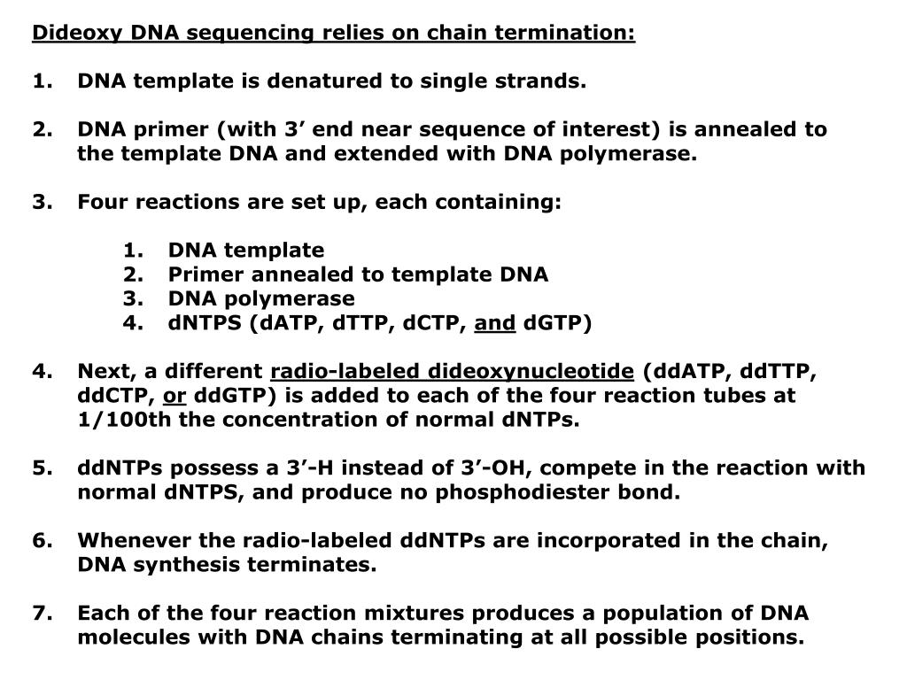 Dideoxy DNA sequencing relies on chain termination: