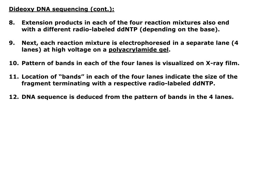 Dideoxy DNA sequencing (cont.):